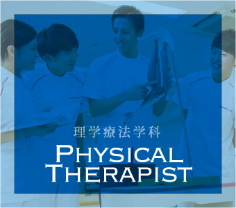 理学療法学科 Physical Therapist